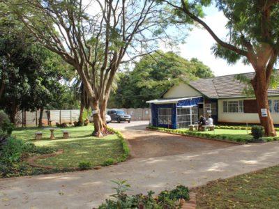 JCT garden and driveway